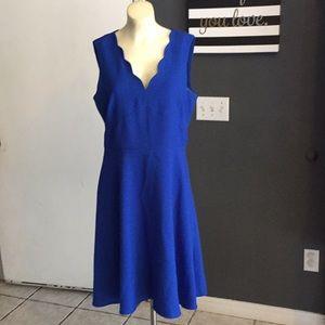 Karl Lagerfeld royal blue scallop edge dress sz 12